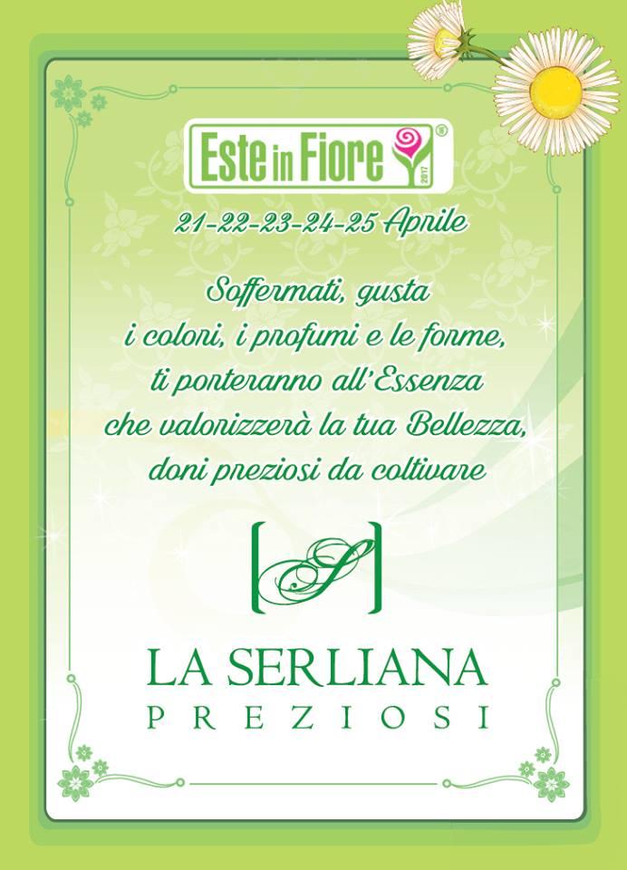 serliana 1